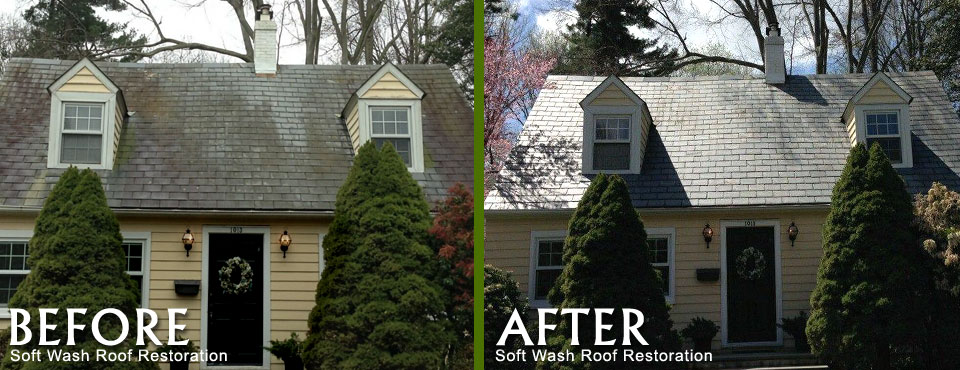 Before and After Soft Wash Roof Cleaning